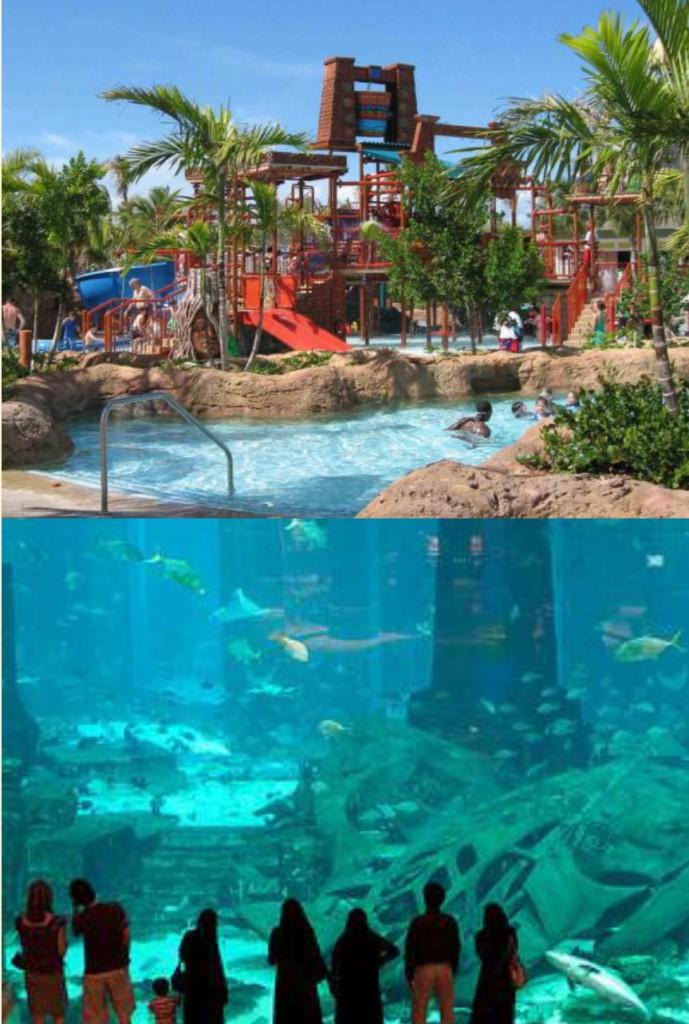 Dubai DMC - Aquaventure