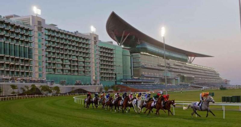 Dubai DMC